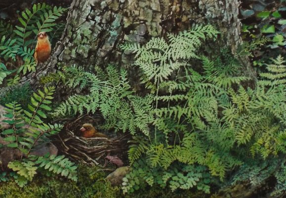 """Forest Floor, detail  watercolor and pastel 12"""" x 36"""""""