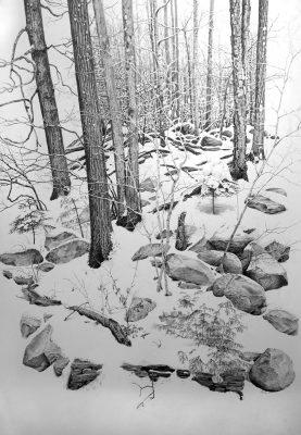 """winterscape  graphite on paper 22"""" x 30"""""""